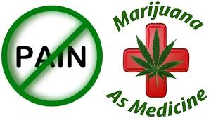 Post Surgical Pain – is Cannabis Effective?
