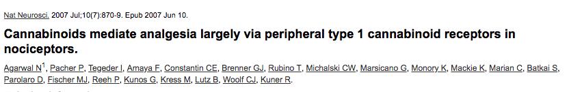 Cannabinoids mediate analgesia largely via peripheral type 1 cannabinoid receptors in nociceptors.