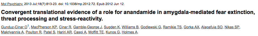 Convergent translational evidence of a role for anandamide in amygdala-mediated fear extinction, threat processing and stress-reactivity.
