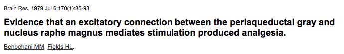 Evidence that an excitatory connection between the periaqueductal gray and nucleus raphe magnus mediates stimulation produced analgesia.