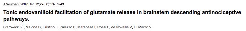 Tonic endovanilloid facilitation of glutamate release in brainstem descending antinociceptive pathways.