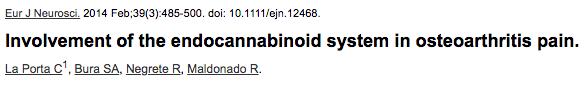 Involvement of the endocannabinoid system in osteoarthritis pain.